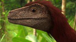 Królestwo dinozaurów