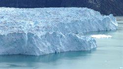 Życie gór lodowych