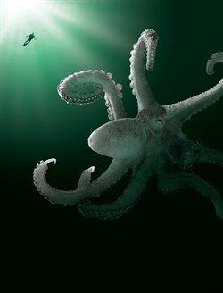 Stwory z morskich głębin