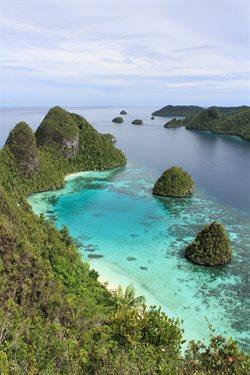 Dzika Indonezja