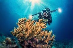 Ziemia. Podwodny świat