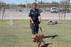 Policja dla zwierząt w Phoenix