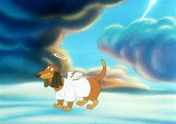 Wszystkie psy idą do nieba
