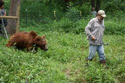 Mój przyjaciel grizzly