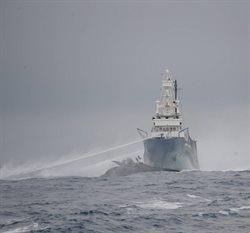 Wojny o wieloryby