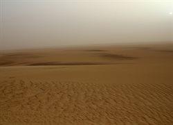 Die Farben ... der Wüste