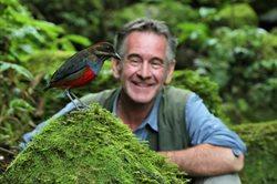 Dzikie Filipiny Nigela Marvena