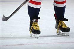 Eishockey: Deutsche Eishockey Liga