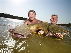 Na ryby bez wędki