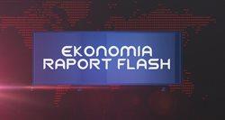 Ekonomia raport _ flash