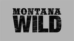 Dzika Montana