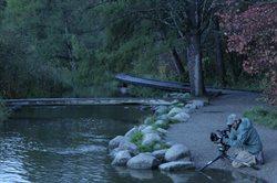 Missisipi _ królowa amerykańskich rzek
