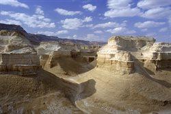 Izrael _ skarby dzikiej przyrody