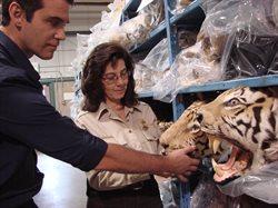 Handel dzikimi zwierzętami